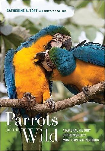 BIRDS (EXCEPT BIRDS OF PREY) - BOOKS 51n11waRyqL._SX346_BO1,204,203,200_