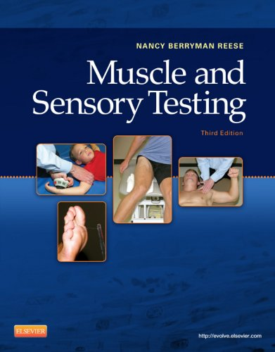 Download Muscle and Sensory Testing Pdf
