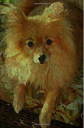 Pomeranian: Renaissance Dogs:  Journal/Notebook/Diary (Volume 31) pdf