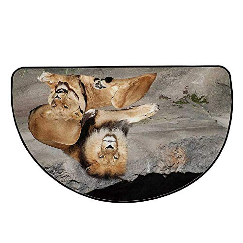 Zoo Comfortable Semicircle Mat,Male and Female Lions Basking in The Sun Wild Cats Habitat King of Jungle for Living Room,17.7