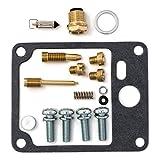 DP 0101-041 Carburetor Rebuild Repair Parts Kit