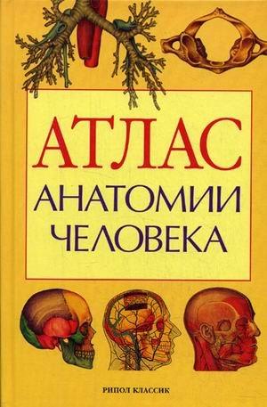 Atlas of Human Anatomy Teaching aid for medical school [offset] / Atlas anatomii cheloveka Ucheb.posobie dlya meditsinskikh uchebnykh zavedeniy[ofset]