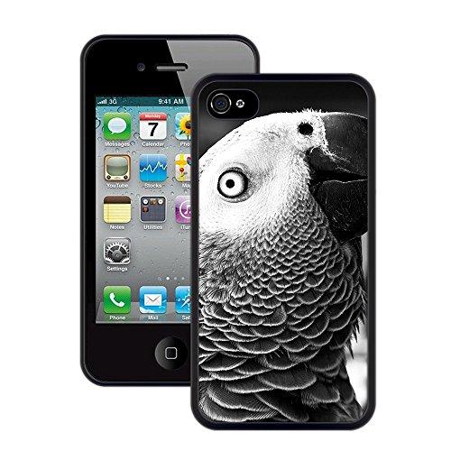 Grau-Papagei | Handgefertigt | iPhone 4 4s | Schwarze Hülle