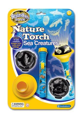 Brainstorm Fun Sciences de l'Education Toy Nature Créatures de la mer torche