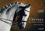Agenda perpétuel chevaux