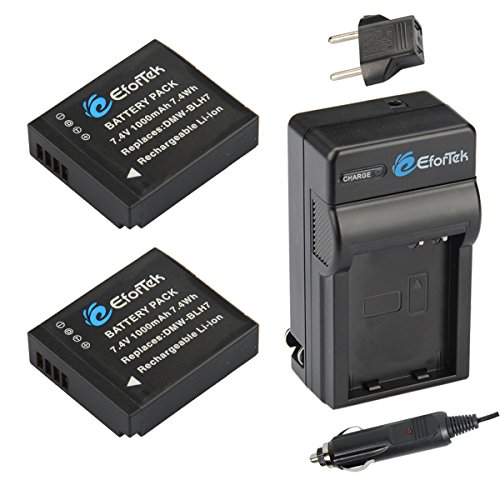 Li 1000mah Extended Battery Ion (EforTek DMW-BLH7 Replacement Battery (2-Pack) and Charger Kit for Panasonic DMW-BLH7, DMW-BLH7E, DMW-BLH7PP and Panasonic Lumix DMC-GM1,DMC-GM1K,DMC-GM1KS,DMC-GM5)