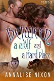 Between a Wolf and a Hard Place- Part 3: BBW Shifter Menage (Bewtween a Wolf and a Hard Place)