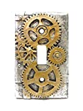 4.25 Inch Resin Steampunk Light Switch Plate Cover, Gold/Gray by PTC