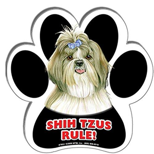 Shih Tzus Rule! 5