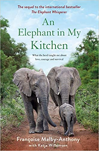 An Elephant In My Kitchen What The Herd Taught Me About