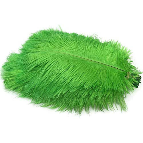 Sowder 50pcs Natural 8-10inch(20-25cm) Ostrich Feathers for Home Wedding Decoration(lime green)]()