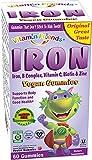 gummy bear with iron - Vitamin Friends Iron Gummies - Vegan, Organic, Kosher, Allergen Free Iron Gummy