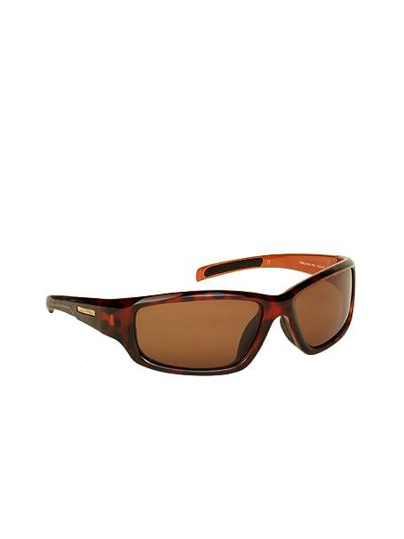 3a6afdfb50 LA Express Wrap Sunglasses (Brown) (10224187