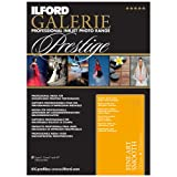 Ilford 2002404 13 X 19 Inches GALERIE Prestige Fine Art Smooth, 25 Sheet Pack (Black)