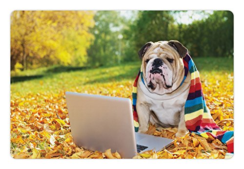 Ambesonne English Bulldog Pet Mat for Food and Water, Dog in The Park with a Laptop and Rainbow Colored Scarf Funny Photography, Non-Slip Rubber Mat for Dogs and Cats, 18