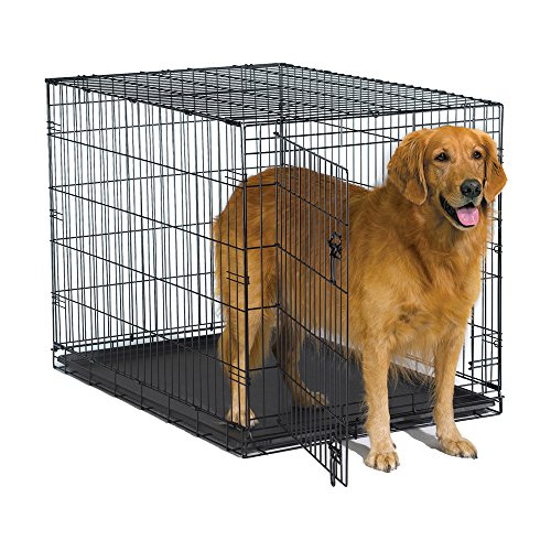 New World 42' Folding Metal Dog Crate, Includes Leak-Proof Plastic...