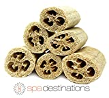 Super Savings Six (6) Pack of 4'' Loofahs!! by Spa Destinations.