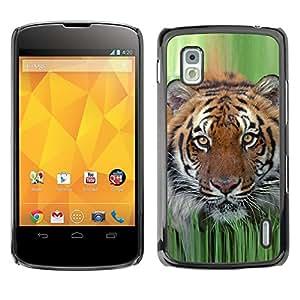 TECHCASE**Cubierta de la caja de protección la piel dura para el ** LG Google Nexus 4 E960 ** Tiger Grass Spring Animal Nature Hunting