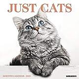 Just Cats 2020 Wall Calendar