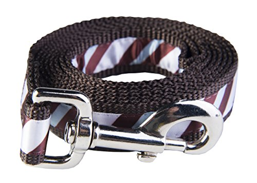 Paw Paws USA Chocolate Snow Cone Stripe Dog Leash, Large, (Snow Cone Stripe)