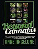 Beyond Cannabis: Halt Autoimmune, Metabolic and