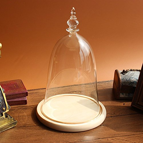 Siyaglass Glass Display Dome with Wooden Base Inspired By Beauty and the Beast