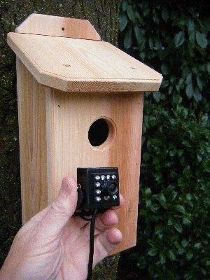 Birdhouse Spy Cam HD Northwoods Cedar Birdhouse
