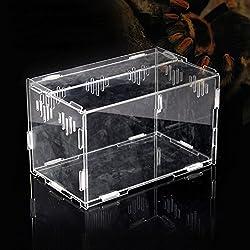 Acrylic Reptile Terrarium for Snake Lizard Testudo Vivarium Tank Assembled