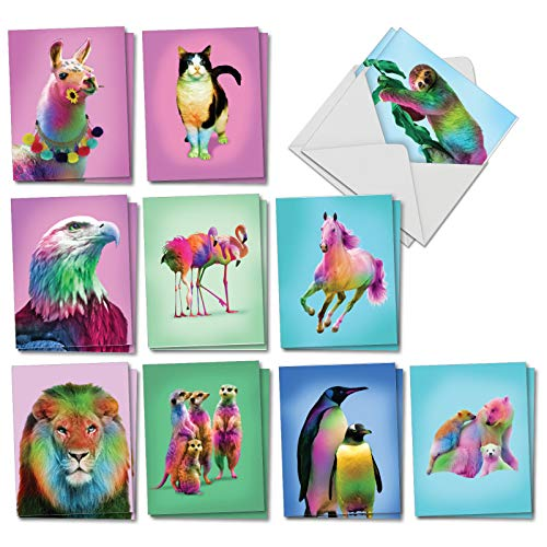 Colorful Creatures: 20 Assorted Blank All Occasions Note Cards Showcasing Wildlife in Bright Rainbow Fur and Feathers, with Envelopes. AM7178OCB-B2x10