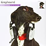 Greyhound 2015 Wall Calendar