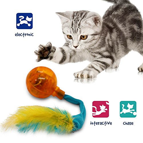 Pet Craft Supply Crazy Cat Electronic Wiggling Cat Toy with Lights and Feathers - Batteries Included from Pet Craft Supply