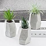 MyGift - Juego de 3 Plantas suculentas Artificiales de 22,86 cm en macetas geométricas de Color Gris Cemento