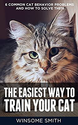The Easiest Way to Train Your Cat: 6 Common Cat Behavior Problems and How to Solve Them