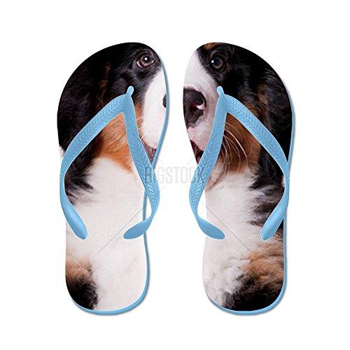 Cafepress Happy Bernese Mountain Dog Puppy - Chanclas, Sandalias Thong Divertidas, Sandalias De Playa Caribbean Blue