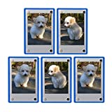 FoRapid 5 PCS 3-inch Clear/Blue Acrylic Refrigerator Magnetic Photo Frame-Elegant Frameless Display Fujifilm Instax Mini 9 8 8+ 70 7s 90 25 26 50s Film/Cards/Memos/HP pocket Photo Paper/2x3 Photo