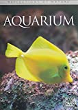 Reflections of Nature -- Aquarium