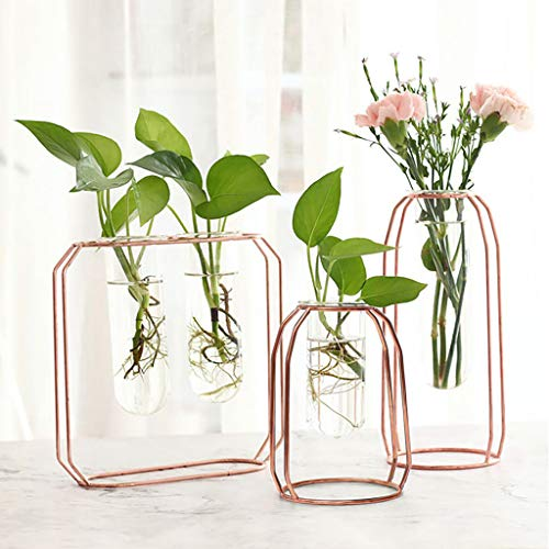 LLJEkieee Creative Hydroponic Plant Transparent Vase -Wooden Frame Coffee Shop Room Decor- Three Shapes -for Christmas Birthday,Children, Lovers,Friend (B)