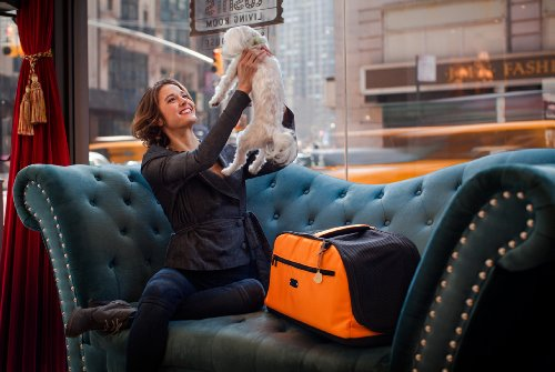 Sleepypod Air In-Cabin Pet Carrier, Orange Dream