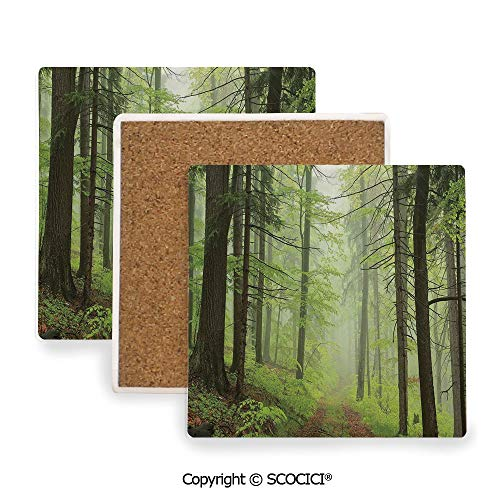 Ceramic Coaster With Cork Mat on the back side, Tabletop Protection for Any Table Type, Square coaster,Outdoor,Trail Trough Foggy Alders Beeches Oaks Coniferous,3.9