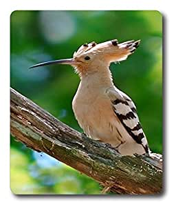 large gaming mouse pad Hoopoe 03 PC Custom Mouse Pads / Mouse Mats Case Cover