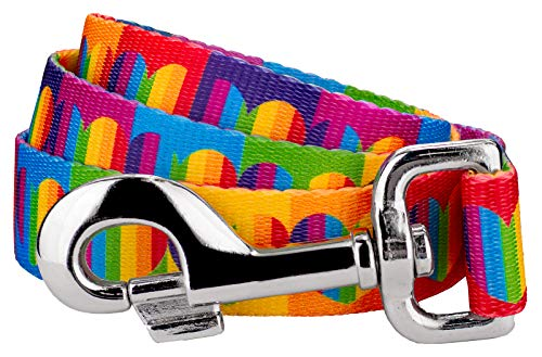 Country Brook Petz | 5/8 Inch Rainbow Hearts Dog Leash - 6 Foot