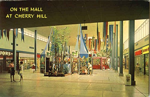 On The Mall At Cherry Hill Cherry Hill, New Jersey Original Vintage - Jersey Cherry New Mall Hill