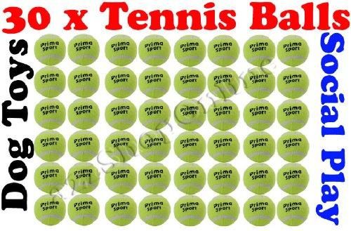 30 x Tennis Balls Social Play / Sports Cricket / Dog Toy Beach, Cricket etc Bargains Hut
