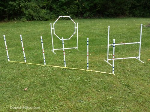 Dog Agility Equipment Complete Package. by Dog Agility Shop, LLC