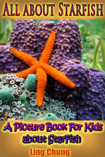 Children's Book About Starfish: A Kids Picture Book About Starfish with Photos and Fun Facts