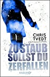 Front cover for the book Av jord er du kommet : kriminalroman by Chris Tvedt