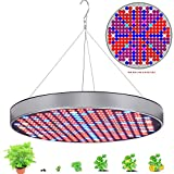 Grow Lights for Indoor Plants 50W Watts, Best LED Plant Light Bulb Panel for Marijuana Vegetables Flower , Red Blue Full Spectrum Growing Lamp for Seedling in Warehouse Greenhouse, UFO Round Shape