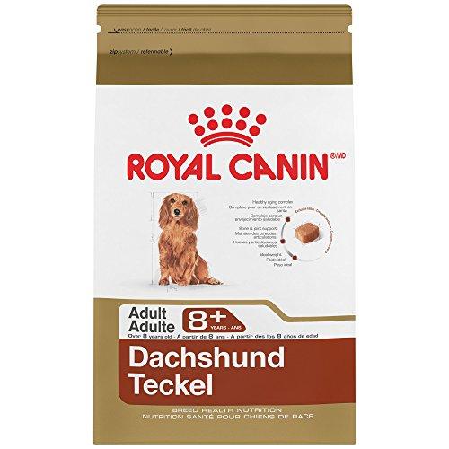 Royal Canin 519703 Breed Health Nutrition Dachshund 8+ Adult