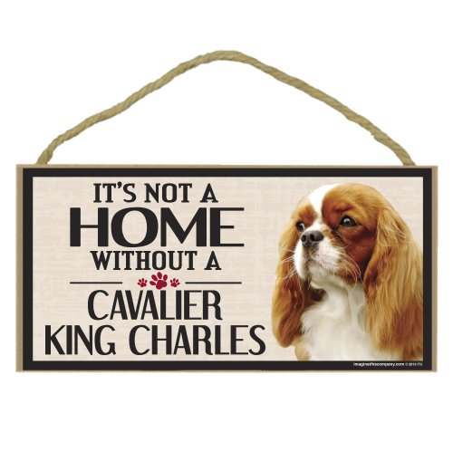 [Imagine This Wood Sign for Cavalier King Charles Dog Breeds] (King Costume Making Office)