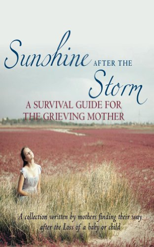 sunshine-after-the-storm-a-survival-guide-for-grieving-mothers